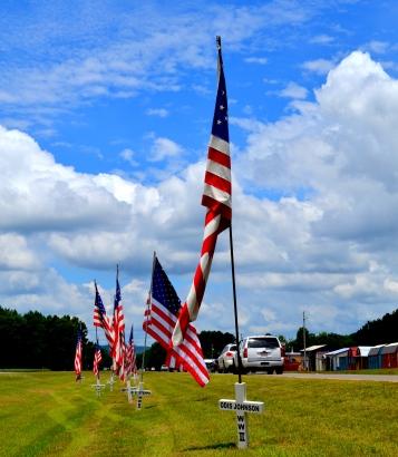Aveunue of Flags.jpg